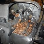 r75_intake_acorns